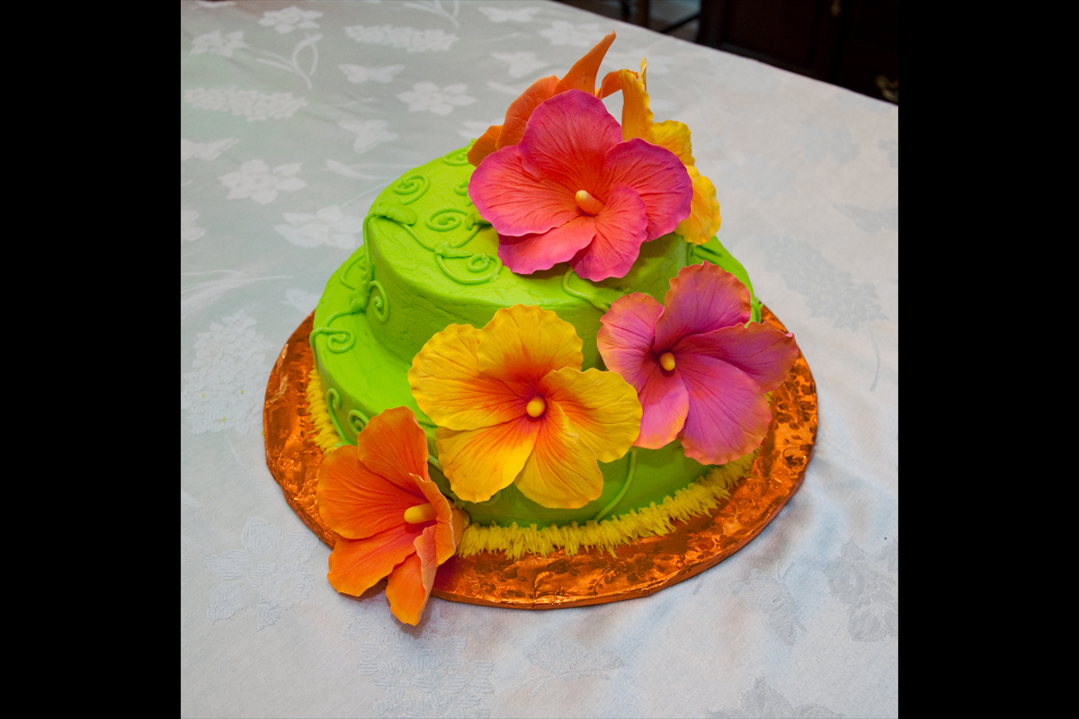 hibiscuscake1